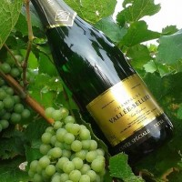 Champagne VALLEE SELLIER